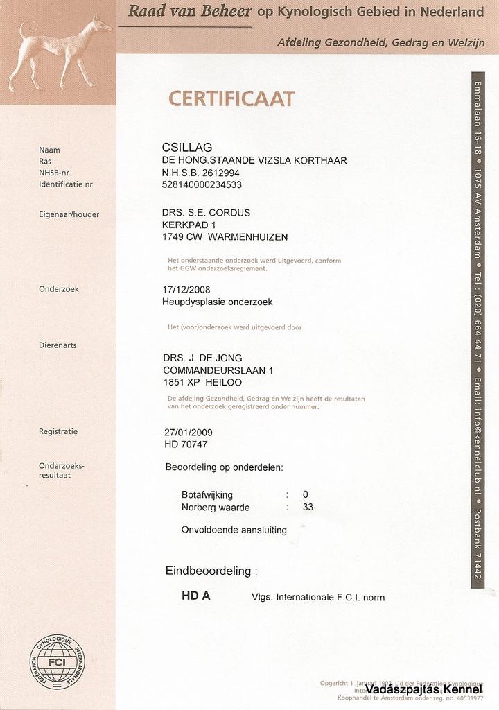 csillag-hd-certificate
