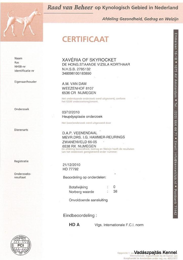 xaveria-of-skyrocket-hd-certificate