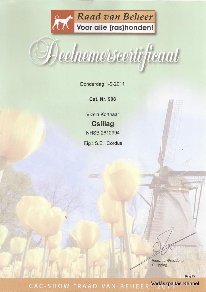 2011-09-01-cac-eurodogshow-leeuwarden-certificaat-csillag
